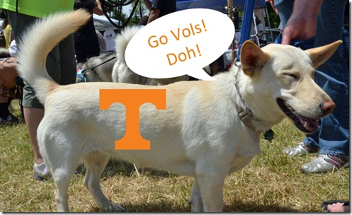April_UT copy